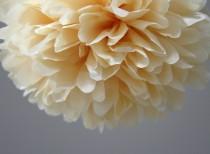 wedding photo - Butterscotch Tissue Paper Pom Poms- Wedding, Birthday, Nursery Decor, Party Decorations