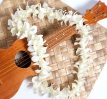 wedding photo - Hawaiian Lei - Fresh White Orchid Lei. Fresh Lei From Hawaii. Ships Fast - Graduation Lei - Wedding Lei