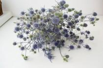 wedding photo - Dry bouquet of thistle blue, thistles, dried flowers, wedding decor, phytomaterial, vase filler, acoustics