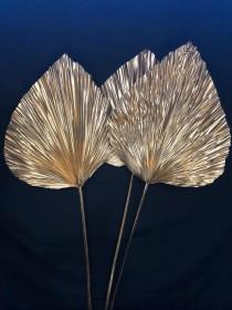 wedding photo - 1pc/3pc XLarge GOLD Anahaw Stem 4ft tall Fan Leaf/GOLD Dried Saribus rotundifolius/Palm Leaf Spear/Boho Decor/Dried floralGold plated