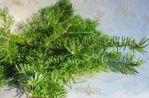 wedding photo - Fresh Cut Balsam Fir Branches