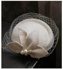 wedding photo - Birdcage Veil