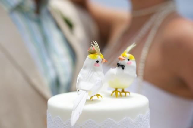 bird wedding cake topper rock cockatiel wedding cake topper and 1723